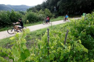 handbikes ruta Carrilet